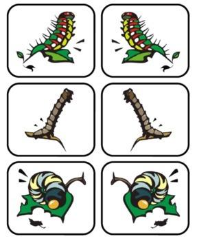 Caterpillar Craze alphabet cards