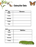 Caterpillar Data Sheet