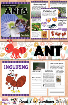All About Ants Nonfiction Unit