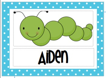 Caterpillar (Insect) Classroom Pack - Editable