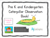 Caterpillar Life Cycle Observation Book