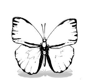 Caterpillar Mobile