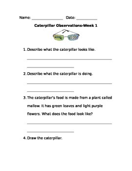 Caterpillar Observation Pages