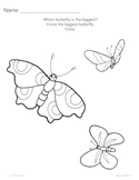 Caterpillar to Butterflies Worksheets