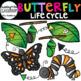 Caterpillar Clip Art and Butterfly Clip Art Growing Bundle