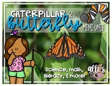 Caterpillar and Butterfly mini unit
