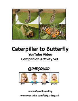 Caterpillar to Butterfly Companion Activity Set