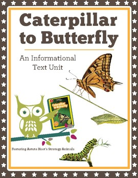 Caterpillar to Butterfly: National Geographic Kids