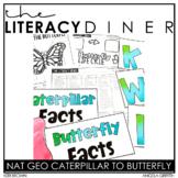 Caterpillar to Butterfly Nonfiction - Kindergarten Interac