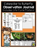 Caterpillar to Butterfly Observation Journal with Life Cycle Posters! NEW!