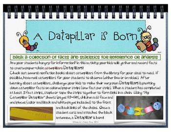 Caterpillars, Datapillars & Butterflies