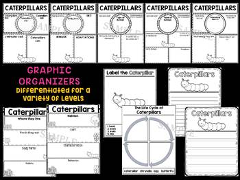 Caterpillars - Writing Craft and Graphic Organizers SET, Book Template, Insects