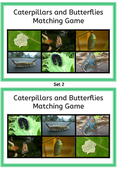 Caterpillars and Butterflies Matching Game