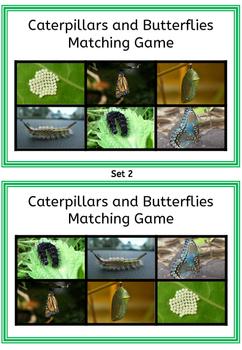 Caterpillars and Butterflies Matching Game