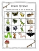 Caterpillars and Ladybugs and Beetles, OH MY!!