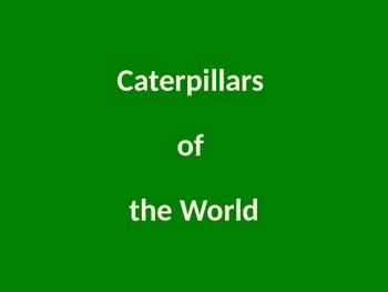 Caterpillars of the World