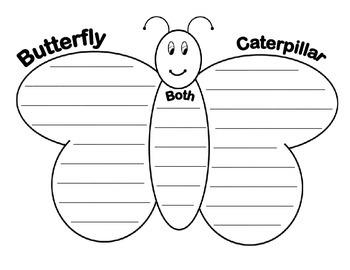 Caterpillars vs Butterflies Venn Diagram