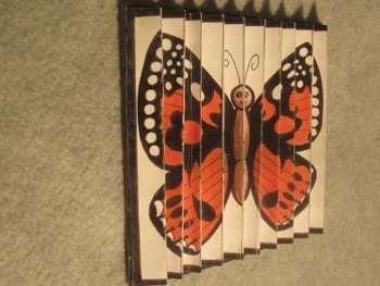 Caterpiller Changes Into Butterfly Folding Project. Fun Craft Art