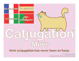 Catjugation: Verb Conjugation Free Sample in French Spanish Italian & Portuguese