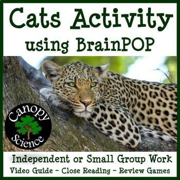 Cats Brain Pop