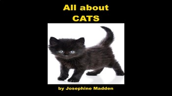Cats, Cats, Cats! PowerPoint