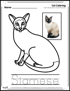 Coloring Pages Cats Ideas - Whitesbelfast | 350x270
