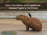 Cats, Crocodiles, and Capybaras - Animal Types in the Forest EPUB