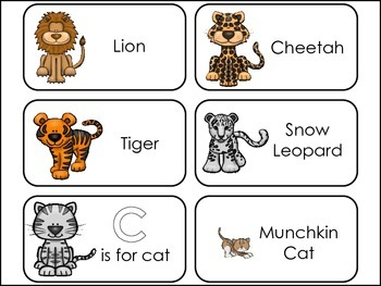 Cats themed Picture Word Flash Cards.