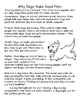 Cats vs. Dogs- Opinion