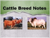 Cattle Breed Power Point