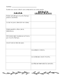 Causa y efecto español / Cause and Effect Spanish