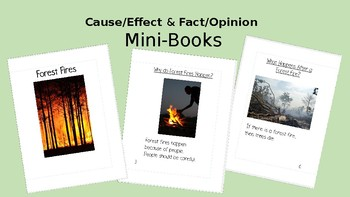 Cause/Effect AND Fact/Opinion Mini-Books