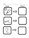 Cause and Effect Assessment