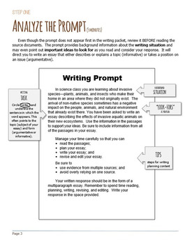 Cause and Effect Essay - Informative Essay Packet