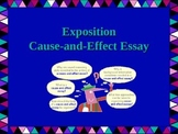 Cause and Effect Exposition Essay Writing PowerPoint
