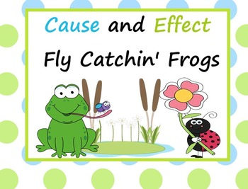 Cause and Effect Fly Catchin Frog