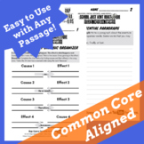 Cause and Effect Graphic Organizer, Cause and Effect Writing Template