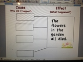 Cause and Effect multi-flow map activity