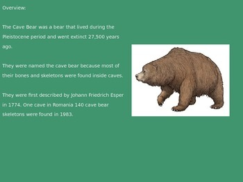 Cave Bear - Power Point - Information Facts Pictures History extinct