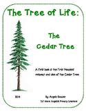 Cedar- Tree of Life for West Coast Peoples