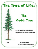 Cedar- Tree of Life for West Coast Peoples