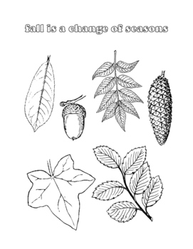 Celebrate Fall Coloring Sheets and Activity Pack