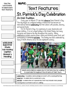 Celebrate St. Patrick's Day Common Core Reading and ELA Skills