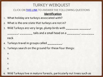 Celebrating Thanksgiving Digital Resource