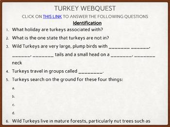 Celebrating Thanksgiving Digital Resource