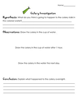picture relating to Celery Experiment Printable Worksheet named Celery Experiment Worksheet Instructors Pay back Instructors