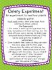 Celery Experiment Booklet
