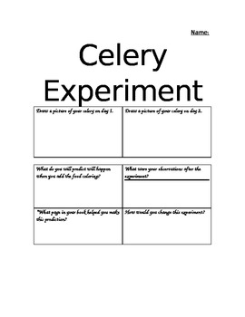 image about Celery Experiment Printable Worksheet identified as Celery Experiment Worksheets Coaching Products TpT