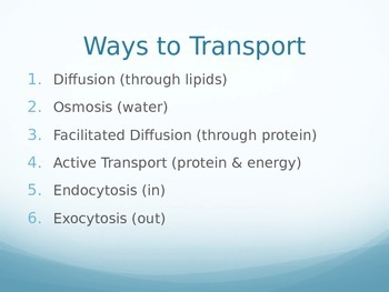 Cell Active Transport PowerPoint