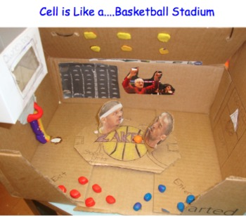 Cell Analogy Diorama Project - Description, Rubric, Examples, Practice, Grading
